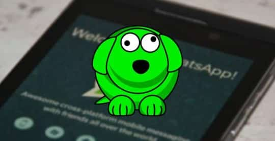 WhatsDog-descubre-ultima-conexion-WhatsApp-aunque-este-oculta