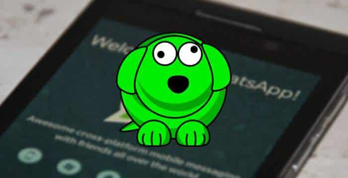 WhatsDog descubre la última conexión de WhatsApp aunque este oculta