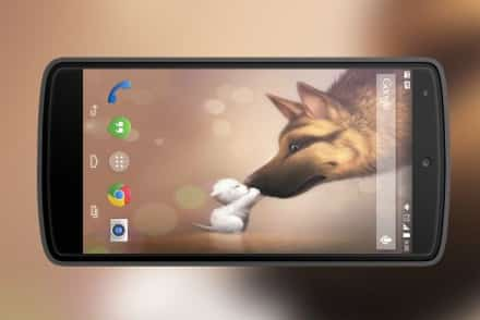 wallpapers-para-android-perros
