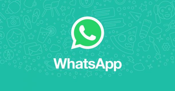 nuevos álbumes de fotos en WhatsApp